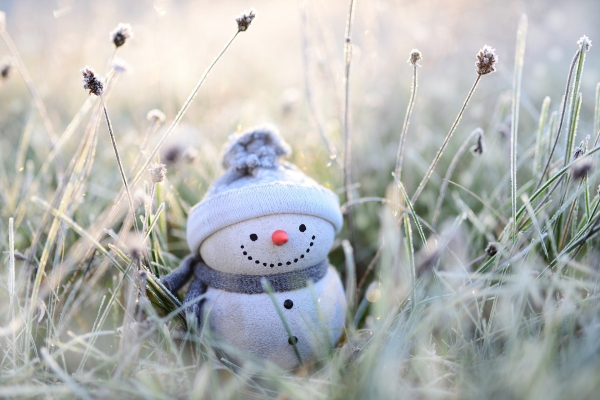 small snowman in frosty grass