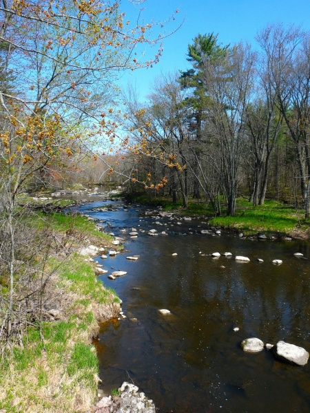 view of a stream at a Wisconsin park