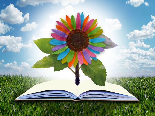 rainbow colored sunflower growing out of an open book